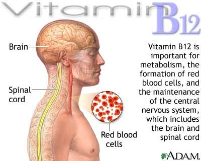 h protein deficiency a vegan 4 me vegans and the vitamin b12 deficiency myth