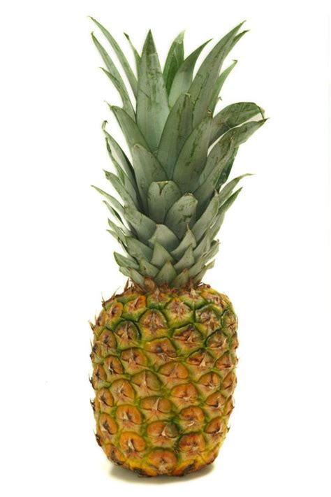 Pineapple Fruit 301 moved permanently