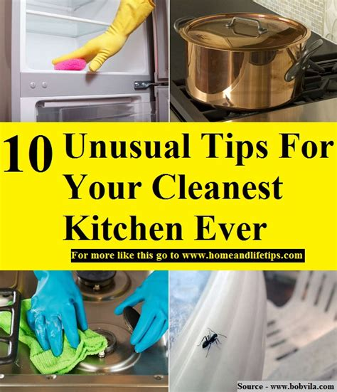 10 Wacky Tips That Actually Work by 10 Tips For Your Cleanest Kitchen Home And