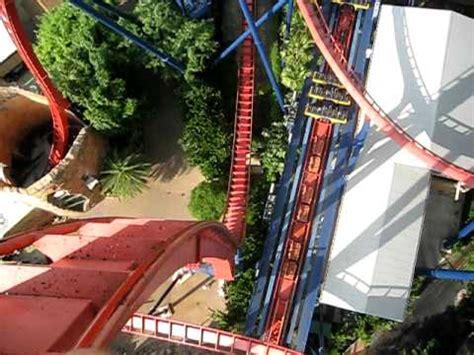 busch gardens sheikra rollercoaster with vertical drop