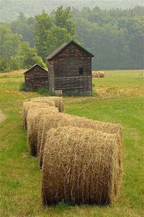 995 best images about cabins and barns on