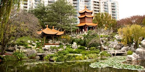 Best China Garden by Budget Friendly Things To Do In Sydney Small Budget Big Trips