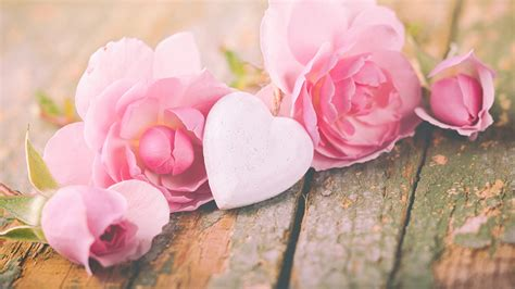 Rosa Blumen by Hintergrundbilder Valentinstag Herz Rosa Farbe