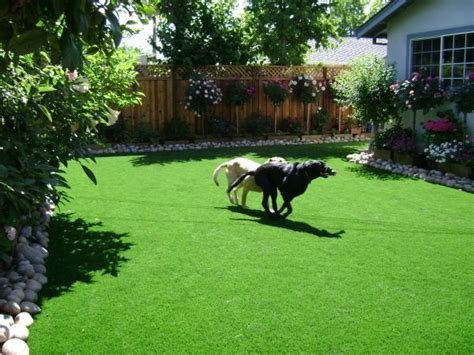 Backyard W by Custom Landscaping Landscaping Ideas For Backyards With Dogs