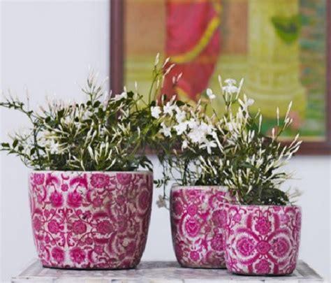 Pot Warna Untuk Tanaman Jual Pot Berwarna 085894576246 tips memilih pot bunga untuk tanaman