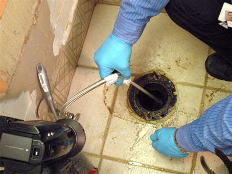 Toilet Drain How To Fix A Clogged Toilet How Tos Diy