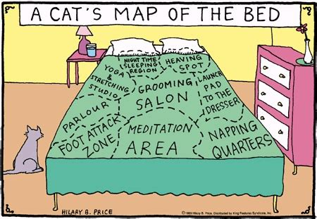 rhymes with bed friday funnies a cat s map of the bed mousebreath magazine