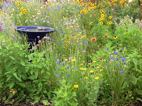 Wildflower Garden Ideas My Backyard Flower Garden Garden Ideas