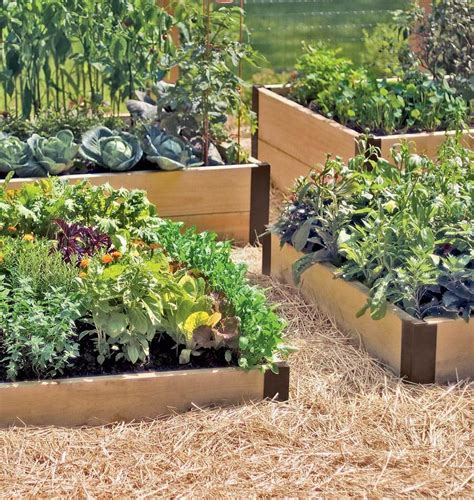 raised garden bed corners raised bed corners west coast seeds