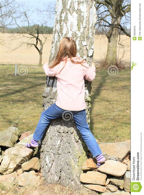young little girls socks little kid girl surrounding a trunk stock photo image