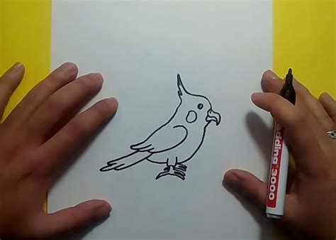 como dibujar un pajaro como dibujar un pajaro paso a paso 2 how to draw a bird