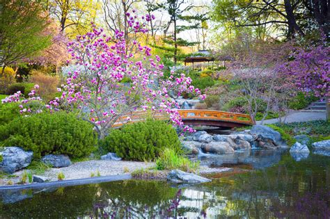 japanese garden walls japanese garden wall murals japanese garden wall murals