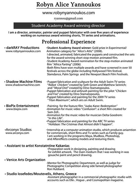 Professional Experience Resume by Resume Professional Experience Resume Ideas