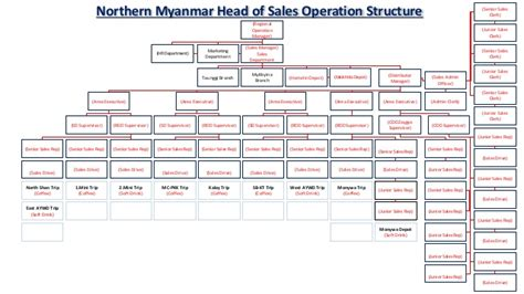 orgnization structure in upper myanmar sales department