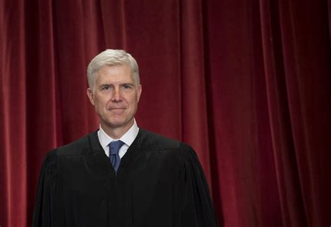 neil gorsuch official photo justice gorsuch s first term shows unwavering conservative