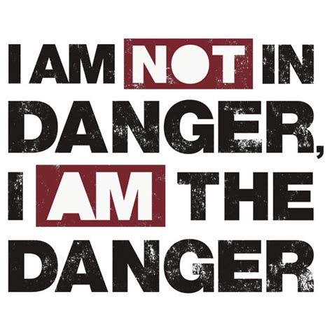 Tshirt Iam The Danget breaking bad i am the danger iron on decal our t
