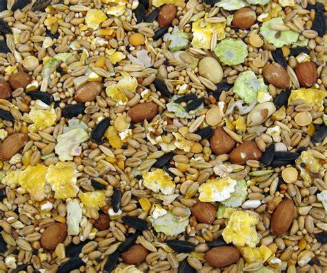 20 kg bulk sack wild bird winter food seed buy in bulk