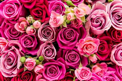 valentines day roses delivery s day flowers the cheapest delivery deals on