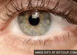 anime eye twitch gif eye twitch gif find on giphy