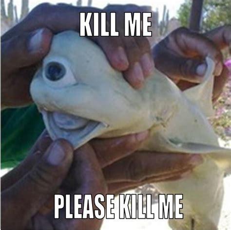 Kill Me Meme - cyclops want die kill me know your meme