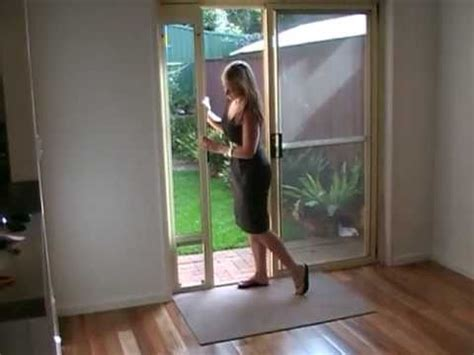 Patio Link Pet Door Patio Link Pet Door Insert Mpg