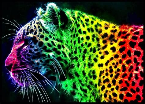 wallpapers of colorful animals colorful rainbow tiger graphic design art picture