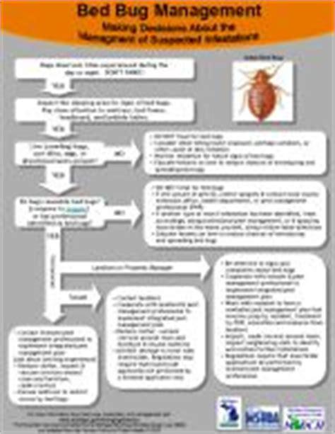 bed bug addendum 8 best images of bed bug letter sle bed bug sle