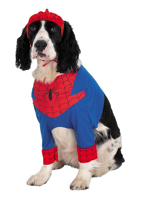 spider costume for dogs spider costume