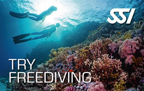 dive ssi ssi freedive course diving gilis islands plongee