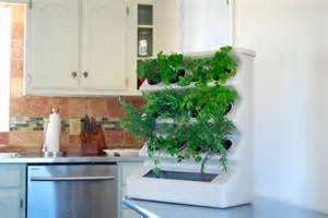 Vertical Garden In Kitchen Vertical Herb Garden Practically Placed In The Kitchen