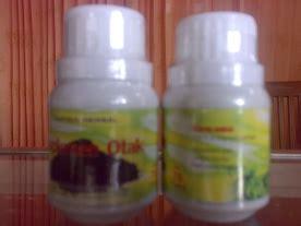 Suplemen Otak Herbal Kapsul Suplemen Otak 171 Produsen Distributor