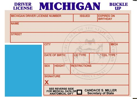 florida drivers license template download nixnational
