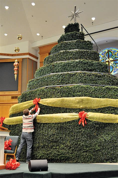 church setting up special living christmas tree