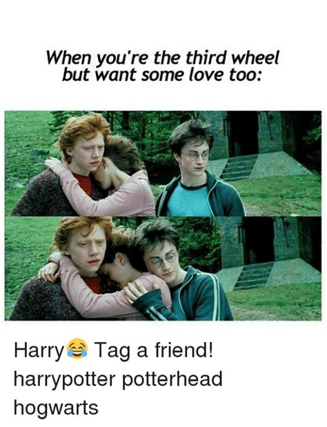 3rd Wheel Meme - when you re the third wheel but want some love too harry