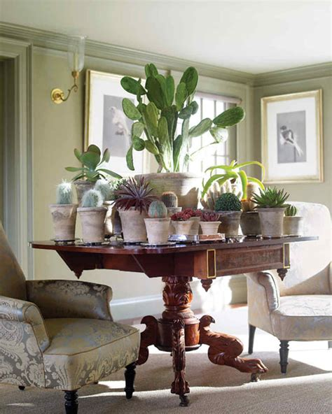 martha s home decorating with houseplants martha stewart