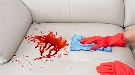 getting stains out of couch how to remove a stain from a sofa youtube