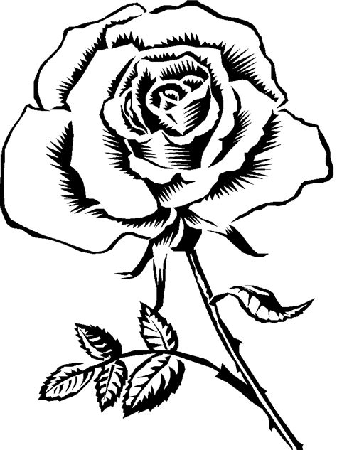 black and white coloring pages of roses line drawing rose cliparts co
