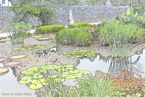 drawing of garden italian garden at biltmore photos and drawings by senior hiker
