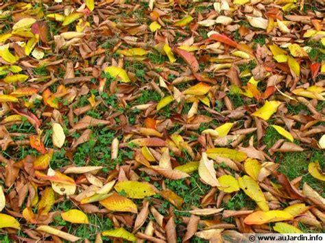 Ramasser Feuilles Mortes ramasser et broyer les feuilles mortes en un tour de
