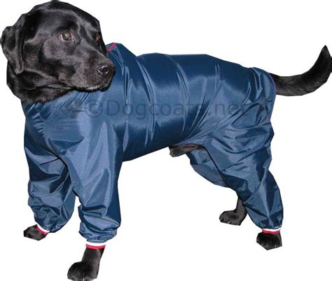 puppy raincoat waterproof raincoat for dogs breeds picture