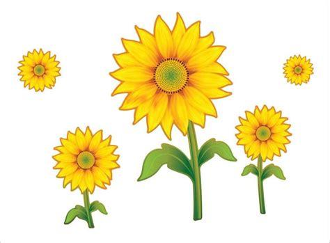 gambar animasi bunga matahari gambar kartun bunga matahari