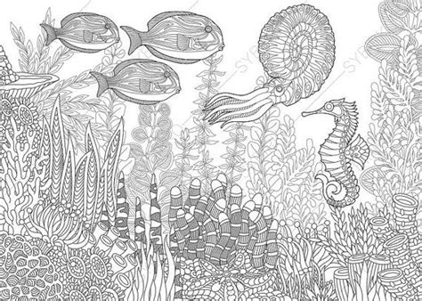 ocean mandala coloring pages adult coloring pages nautilus seahorse fish zentangle