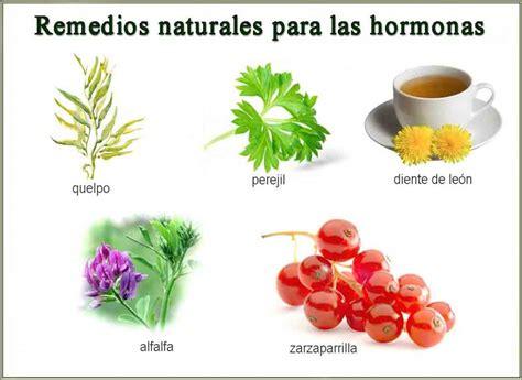 plantas medicinales remedios caseros medicina natural plantas medicinales remedios caseros medicina natural