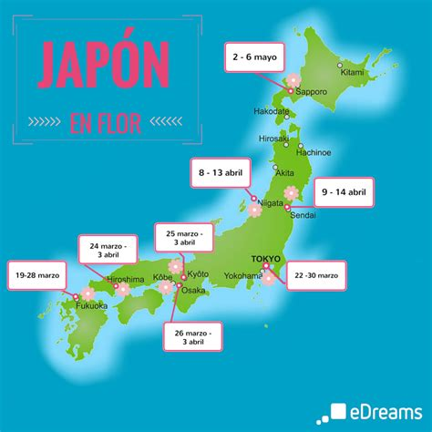imagenes del pais japon jap 243 n con los cerezos en flor gu 237 a para celebrar el hanami