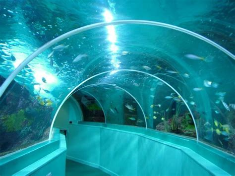 Blue Reef Aquarium, Portsmouth, England