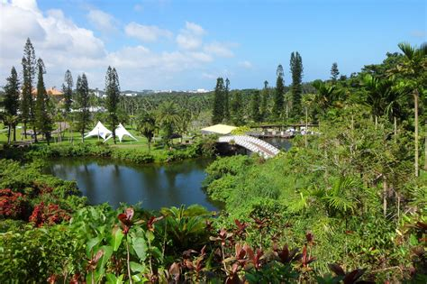 Southeast Botanical Gardens 2016 Local Events Calendar Billed For July Okinawa Hai