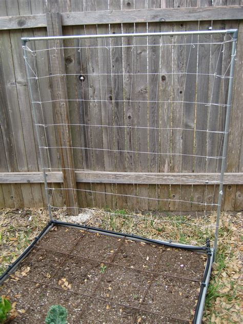1 Foot Trellis Raised Bed Gardening The How Do Gardener
