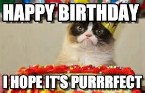 Cat Birthday Memes - grumpy cat birthday meme pictures to pin on pinterest