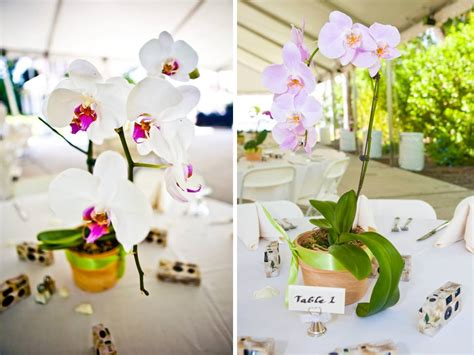 orchids wedding centerpieces 1000 images about wedding ideas on receptions purple orchids and purple hydrangeas