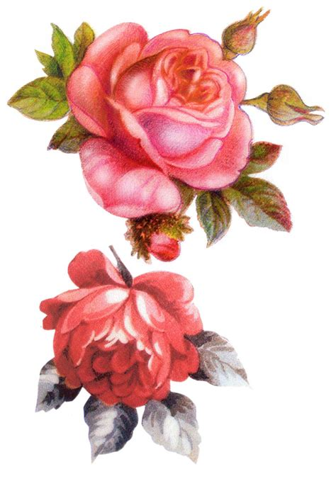 Decoupage Roses - g 220 ller on vintage roses decoupage and